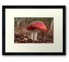 Held Spellbound Framed Print