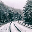 Snowy Travel by MichelleAyn