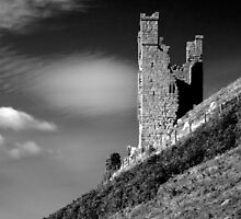 Lilburn Tower by Rachael Talibart
