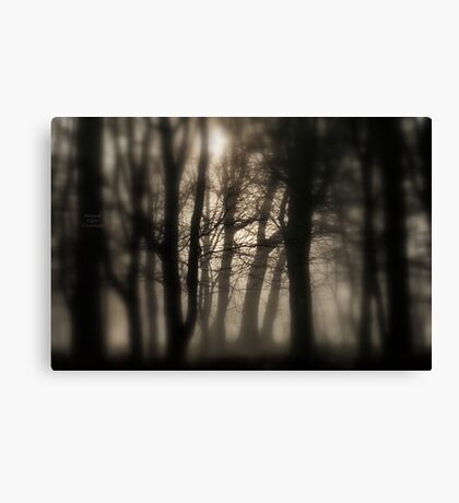 """ Woods In Freezing Fog "" Canvas Print"