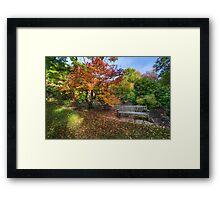 Autumn Bench Framed Print