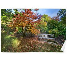 Autumn Bench Poster