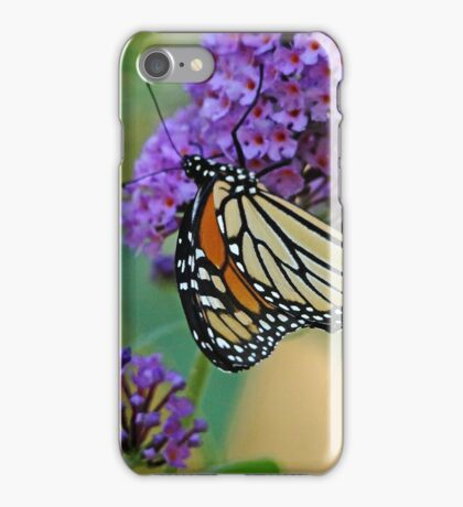 Sipping Nectar iPhone Case/Skin