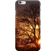Through The Branches... iPhone Case/Skin