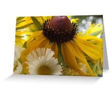 Fresh Spring Wildflowers Bokeh Bouquet Greeting Card