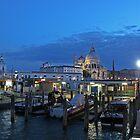 Venice Salute Church at dusk by Elena Skvortsova