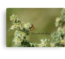 Bee-Enjoy the little things in life Canvas Print
