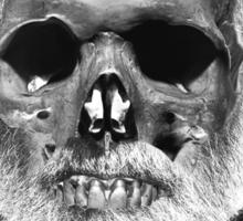 """Ernest """"Skull"""" Hemingway Sticker"""