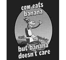 Cow Eats Banana Photographic Print