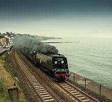 Tangmere at Dawlish  by Rob Hawkins