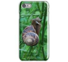 Little climber iPhone Case/Skin