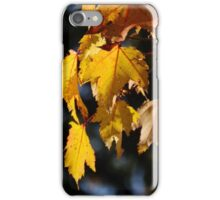 Maple Certainly   iPhone Case/Skin