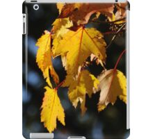 Maple Certainly   iPad Case/Skin