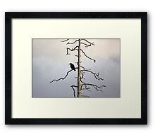 Dark wings, dead trees Framed Print
