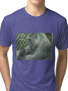 You are not allowed to ape us. Tri-blend T-Shirt