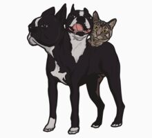 3 Headed Cat Dog by beendeleted