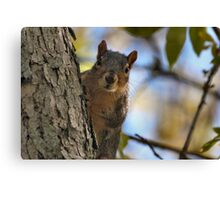 Peanuts first! Then I pose! Canvas Print