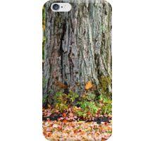 Fall 2.0 iPhone Case/Skin