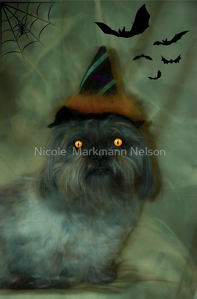 My little witch  by Nicole  Markmann Nelson