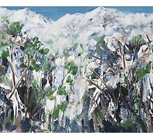 Snow Scene 1 - Abstract Photographic Print