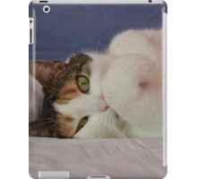 Buffy iPad Case/Skin