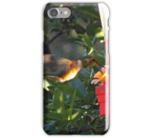 Humming Bird iPhone Case/Skin