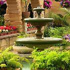 Royal Tasmanian Botanical Gardens-conservatory Fountain by Tony Steinberg