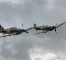 Mk1 Spitfire and Hurricane by Nigel Bangert