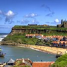 The Endeavour in Whitby Harbour by Tom Gomez