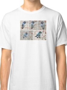 COLLAGE OF MALE HUMMINGBIRD COSTA'S ON YUCCA REED Classic T-Shirt