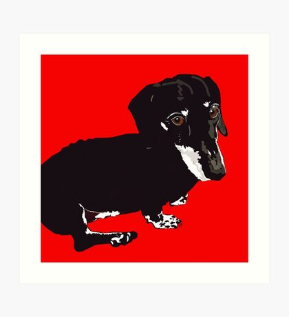 Daschound Dog Art Print