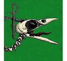 Scissor Crow Photographic Print