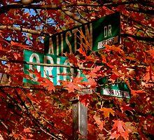 Fall Walk in my Neighborhood - Street Sign     ^ by ctheworld