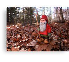 St. Nicholas Out for an Autumn Walk Canvas Print