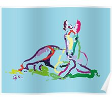 Horse - foal - Sweetie Poster