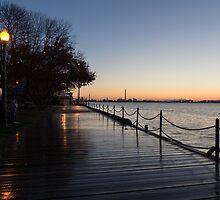 Wet Boardwalk - a Clear Morning After the Rain by Georgia Mizuleva
