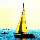 Sailing Boat on Lake Constance by ©The Creative  Minds