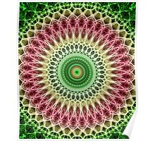 Light green and red mandala Poster