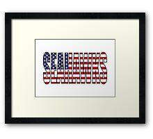 Seahawks Framed Print