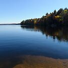 A Blue Autumn Afternoon - Algonquin Lake Serenity by Georgia Mizuleva