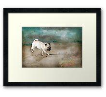 When Pugs Fly Framed Print