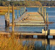 Golden Marina by Gilda Axelrod