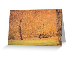 Autumn Landscape -- Trees By The River Greeting Card
