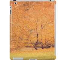 Autumn Landscape -- Trees By The River iPad Case/Skin