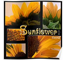 Sunflower Macro Collage Scrapbook Page Poster