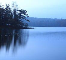Muted Morning Sunrise by Chris Coates
