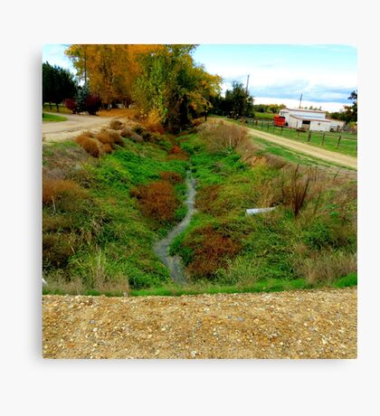 Irrigation Over Growth Canvas Print