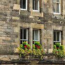 Upper Bow, Edinburgh, Scotland by fotosic