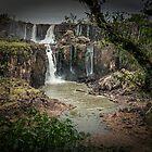Iguaza Falls - No. 10 by photograham