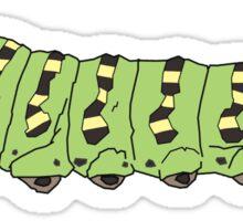 Black Swallowtail Caterpillar  Sticker